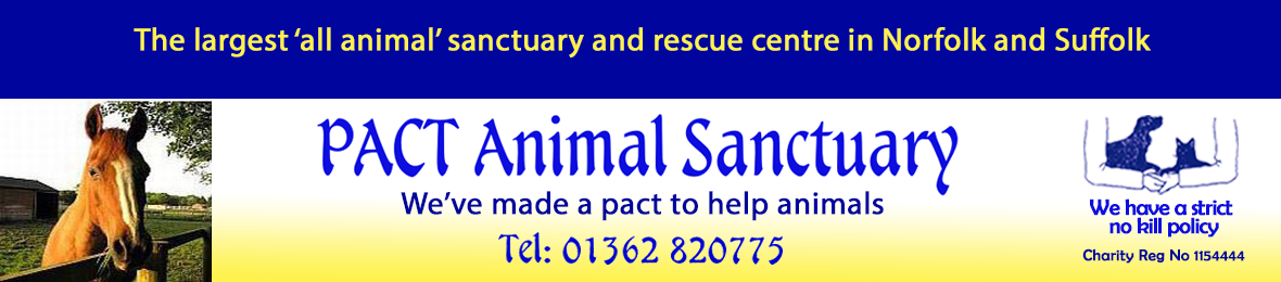 PACT Animal Sanctuary - The largest 'all animal' sanctuary and rescue centre in Norfolk and Suffolk - We have a strict No Kill policy